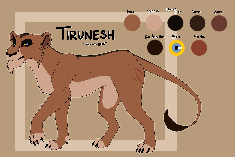 Tirunesh Reference Sheet