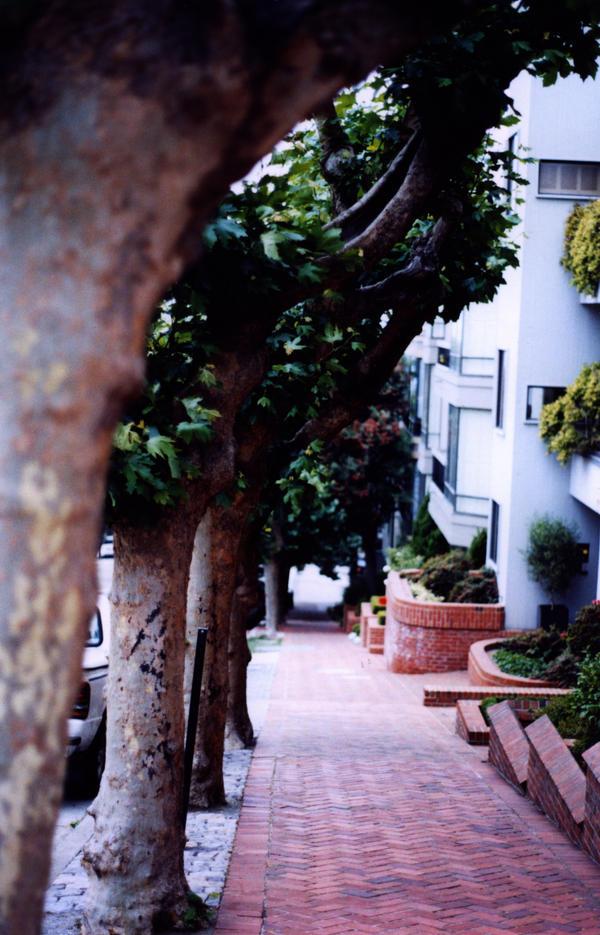 Empty street in San Fran by MrMushroomMan