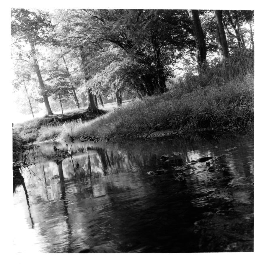 Medium format River by MrMushroomMan
