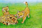 Dtiys - Panthera Arven - Africa Comic
