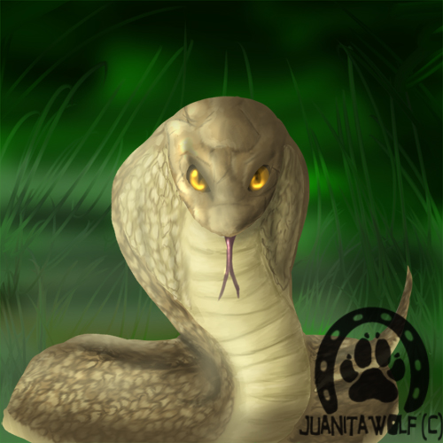 the snake speedpaint by juanitawolf