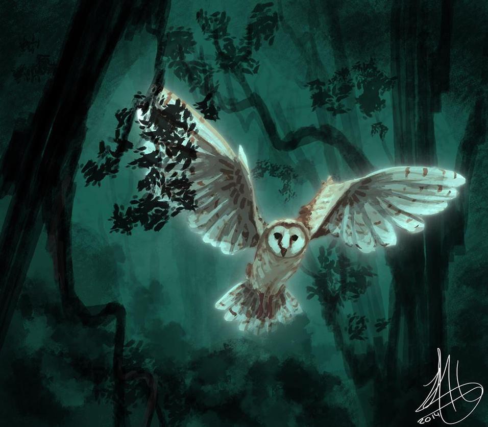 the owl --speedpaint-- by juanitawolf