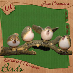 CU - Birds on a Limb Freebie