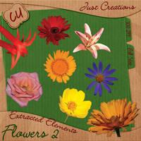 CU Flowers Freebie