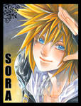 Hello Sora