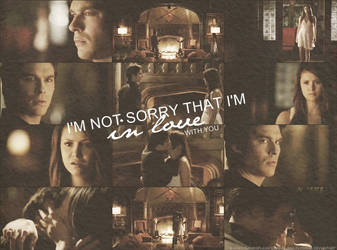 Damon + Elena ''I'm not sorry '' by LenaFlowers