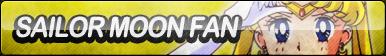 Sailor Moon Fan Button By Requestbuttons-d5h64sc