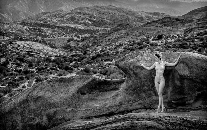 The lookout- by Danwarner