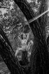 Tree nymph by Danwarner