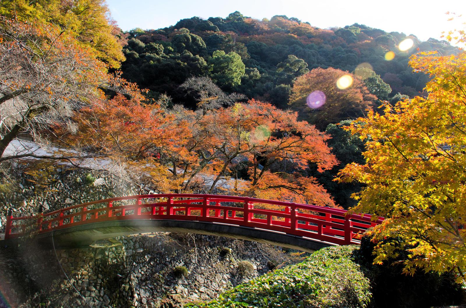 Minoo Park, Osaka by narasinha2015 on DeviantArt
