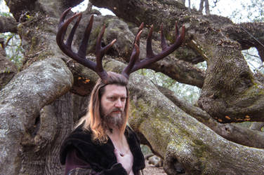 Cernunnos in the Boughs of The Angel Oak