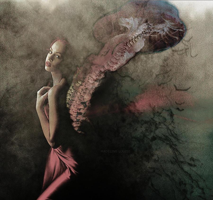 Spine in Jellyfish
