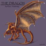 Dragon anatomy -- Part One