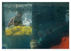 Fishermen Life 6