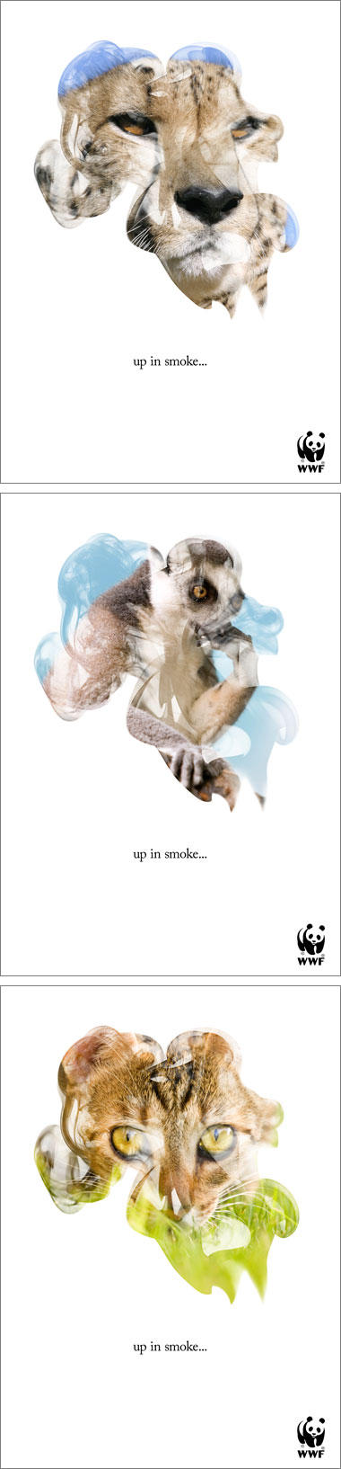 Up in smoke campaign