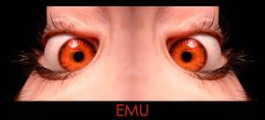 EMU by steve0