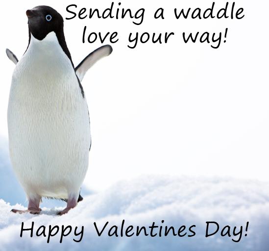 Image Result For Penguin Valentines Day