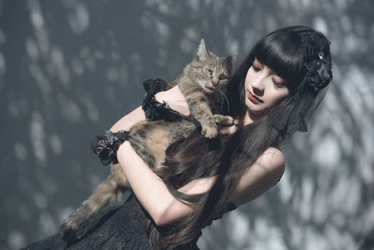 The Lady and the Cat