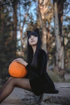 Black cats howl, Pumpkins laugh