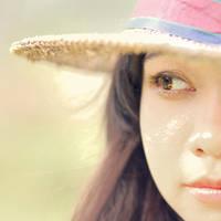 Sun flower 's eyes