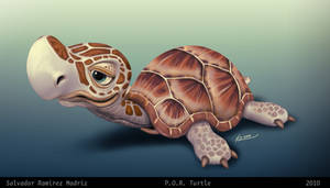 P.O.R. Turtle by ReevolveR