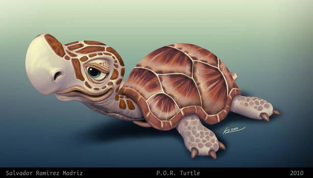 P.O.R. Turtle