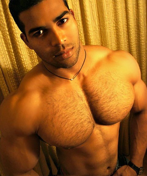 Gay arabian men photos