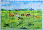 Rohan's fields