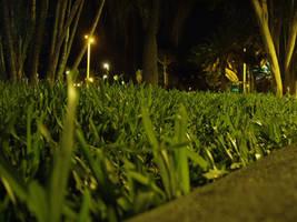 herba by quinti