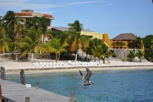 Isla Mujeres 2
