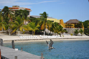 Isla Mujeres 2 by quinti
