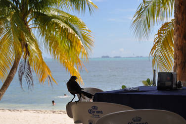 Isla Mujeres 3 by quinti