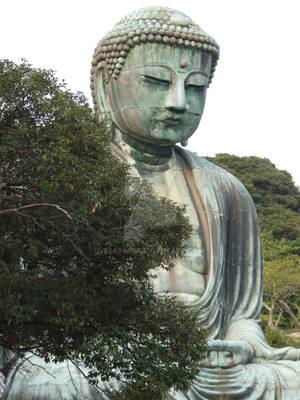 Japan 2008 pic24