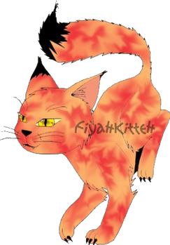 Drawing: Accidental FiyahKitteh Concept