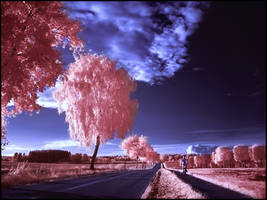 Country Road III infrared... by MichiLauke