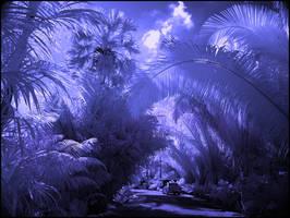 Tropical Paradise Garden III by MichiLauke