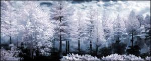 Arboretum-Pano Infrared...