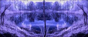 Horizontal Flip Lake infrared