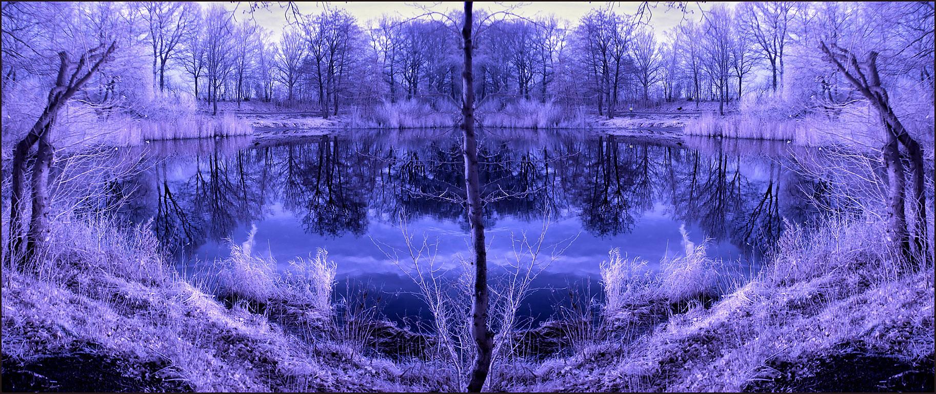 Horizontal Flip Lake infrared by MichiLauke