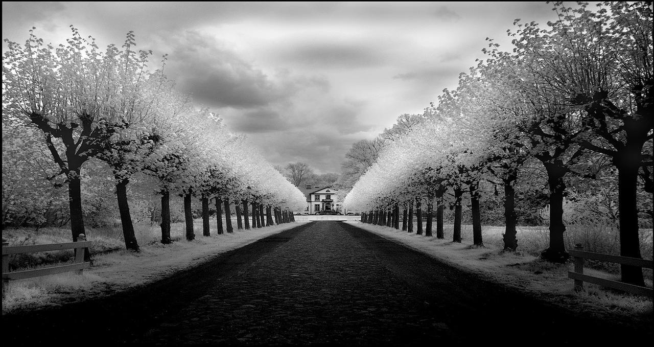 Castle Avenue infrared