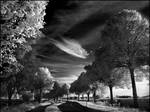 Skyfishcloud infrared...