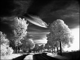 Skyfishcloud II infrared... by MichiLauke
