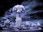 Mushroom Tree infrared...