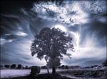 Summer Clouds infrared