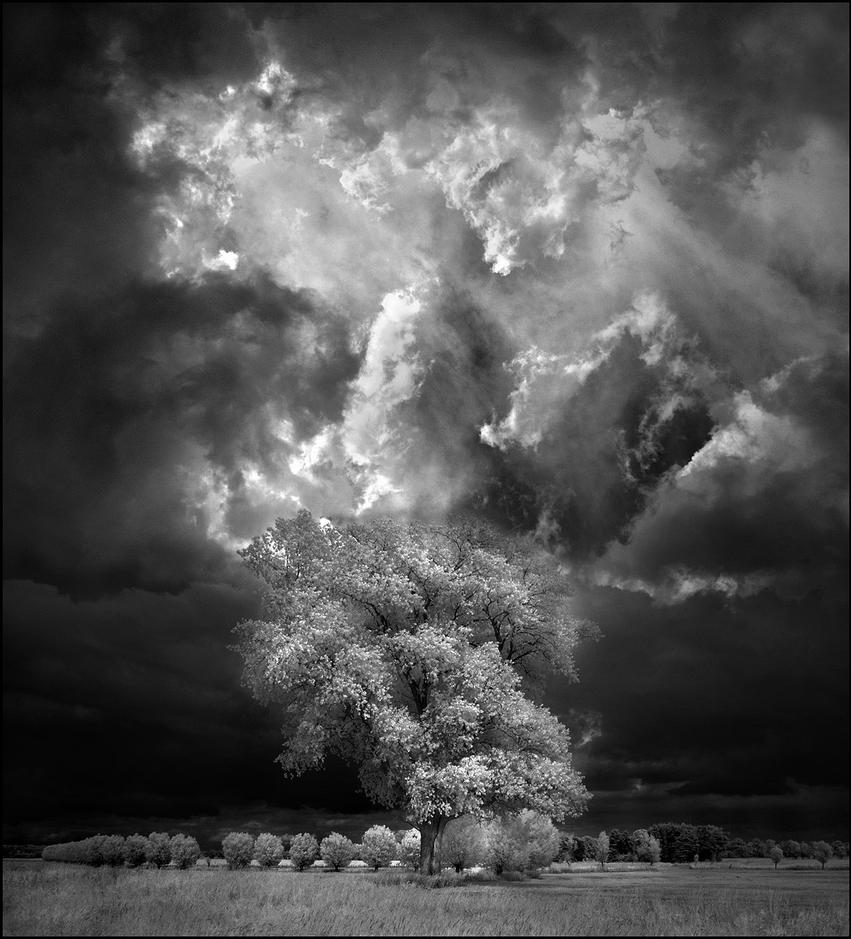 Digital Infrared Photography ? Very Easy! By MichiLauke On