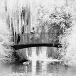 Idyllic Bridge b+w infrared
