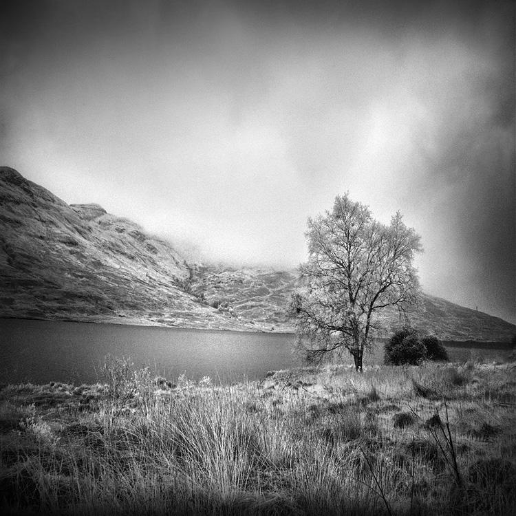 Highlands b+w by MichiLauke