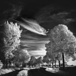 Skyfishcloud III infrared...