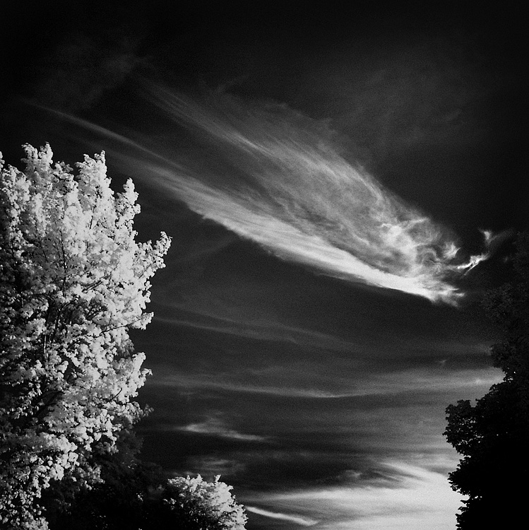 Skyfishcloud IV infrared... by MichiLauke