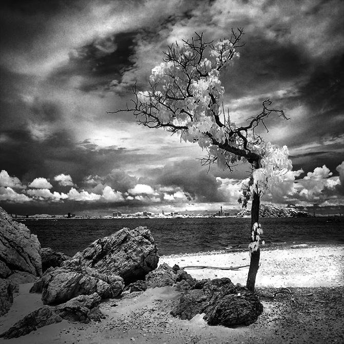 Lost Beach - infrared by MichiLauke